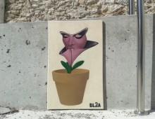 PlantaCara. Figueres