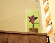 PlantaCara – Barcelona
